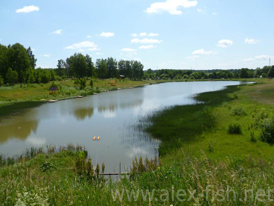 платная рыбалка в озерском районе московской области