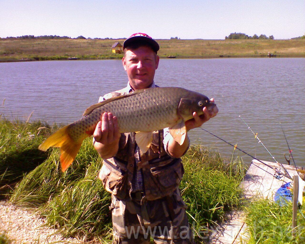 платная рыбалка на есинских прудах