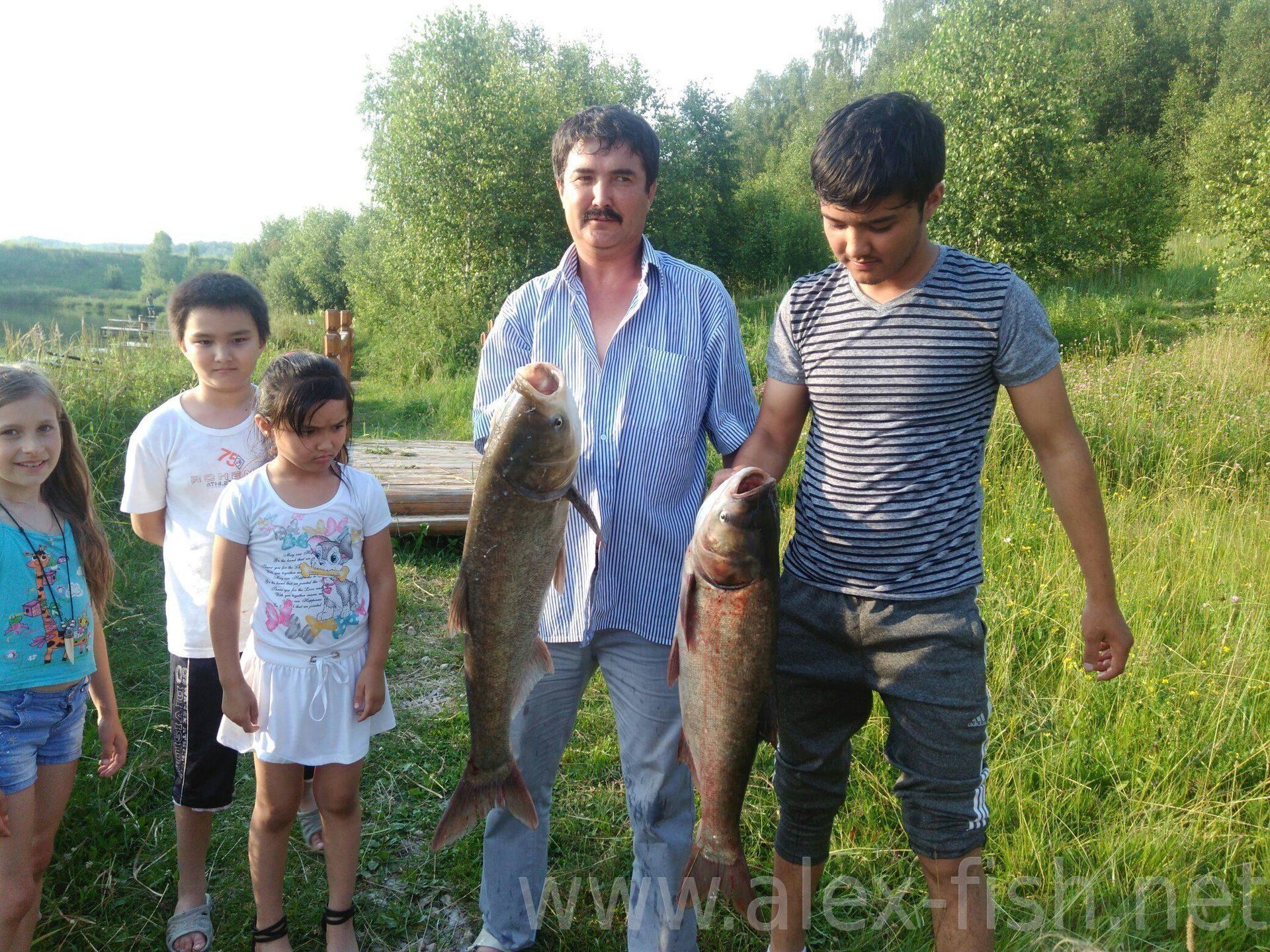 бебелево калужская рыбалка